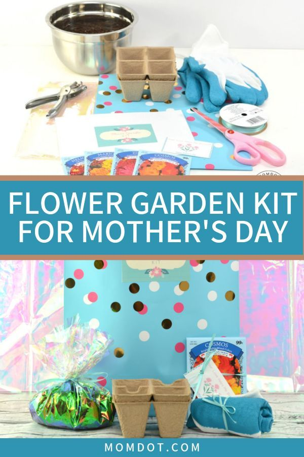 Mother\u002639;s Day Gifts \u0026 Crafts : Mother\u002639;s Day Flower Garden Kit: An Easy DIY Gift Idea  Fashion