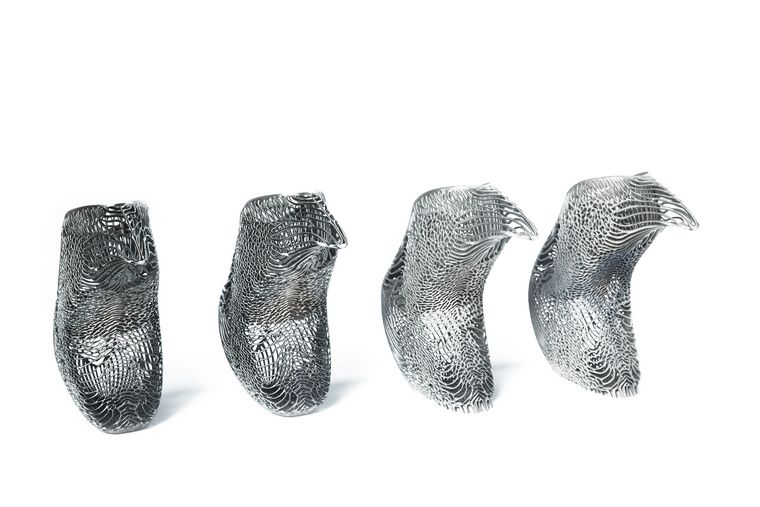Ica Kostika ramifications Mycelium shoe