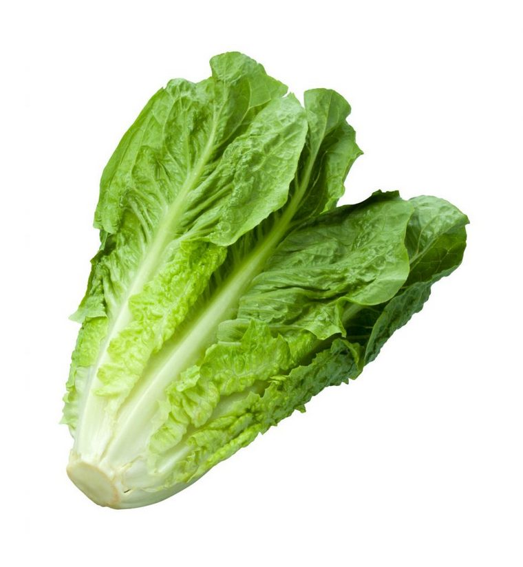 benefits green salad lettuce type roman