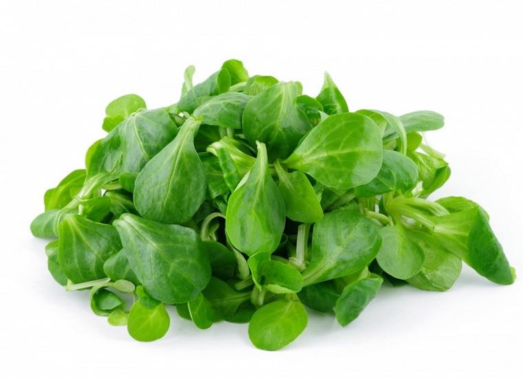 benefits salad green chews
