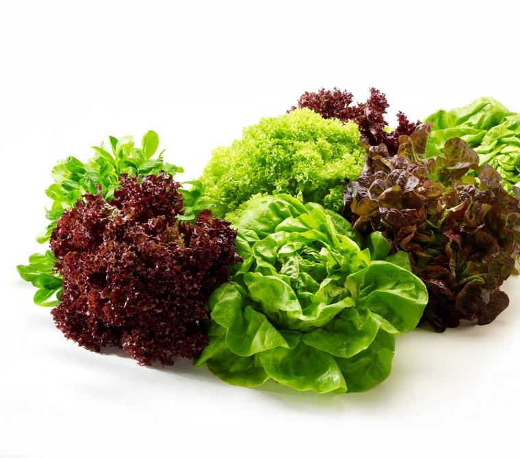benefits salad green mixture