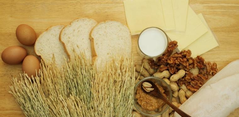wheat and gluten allergies