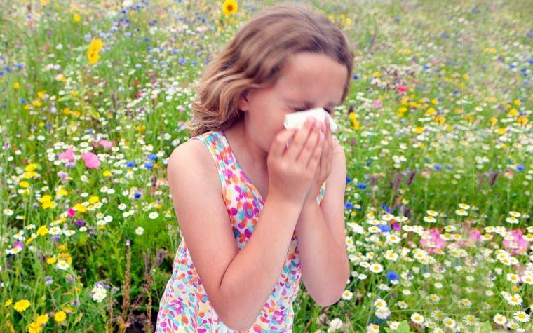 allergy to pollen-allergens airborne
