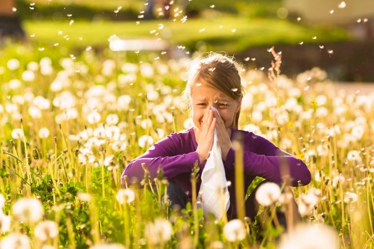 the allergic reaction to pollen-airborne allergens