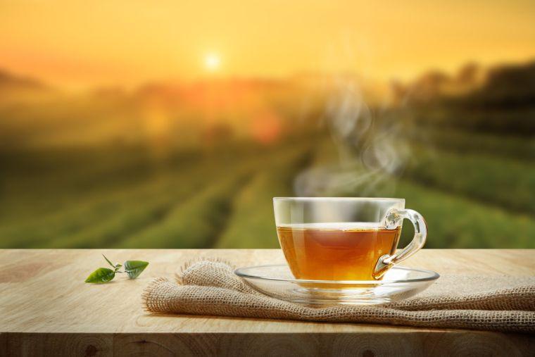 antioxidant teas
