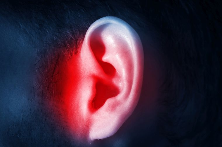 noise pollution and hearing