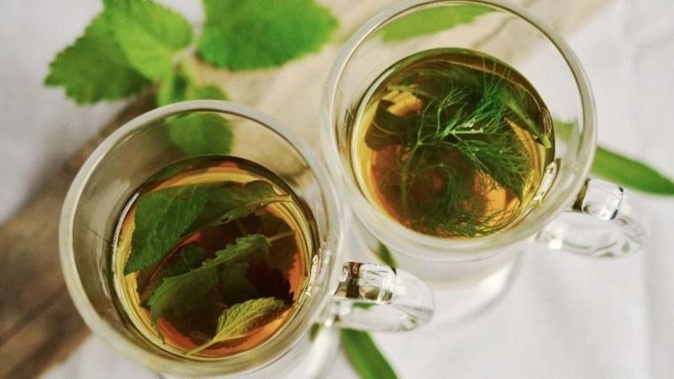 green tea against the flu