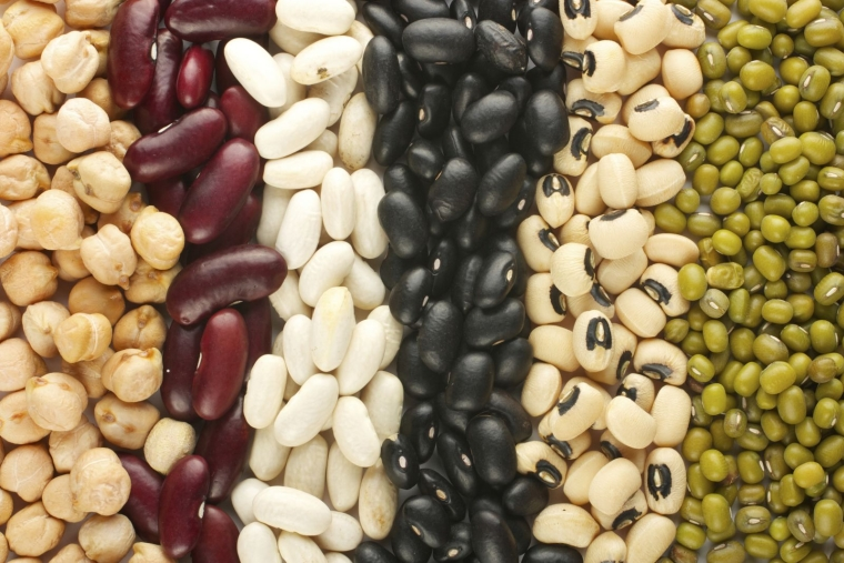 boost your metabolism with beans