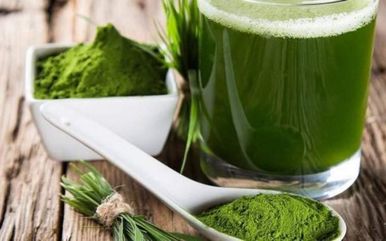 Spirulina recipes for weight loss