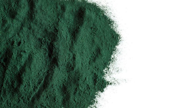 spirulina for weight loss powder