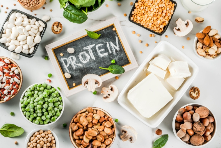 vegetarian dishes are rich in protein