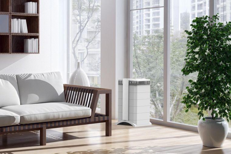 ideas how to clean the air