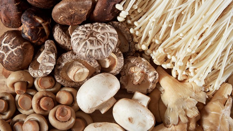 mushrooms to boost immunity