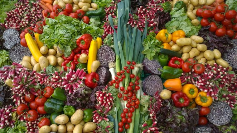 healthy diet and vegetables
