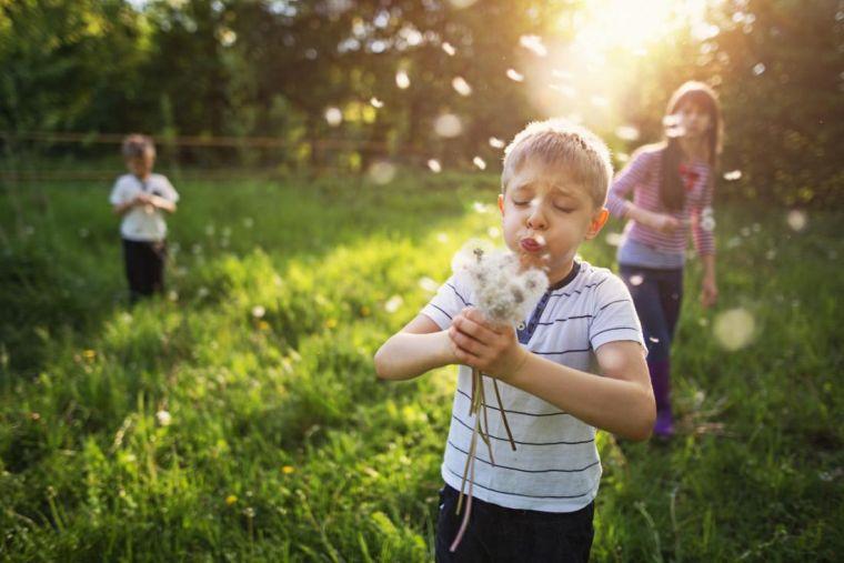allergens that cause colds in children