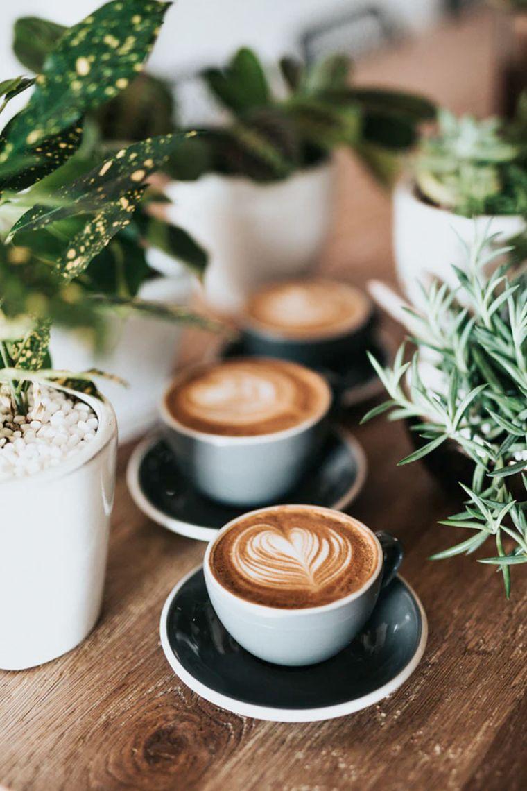 antioxidants in caffeine
