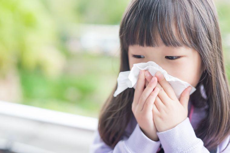 seasonal allergic rhinitis child