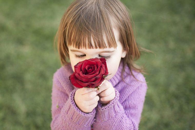 Seasonal allergic rhinitis in children and its causes