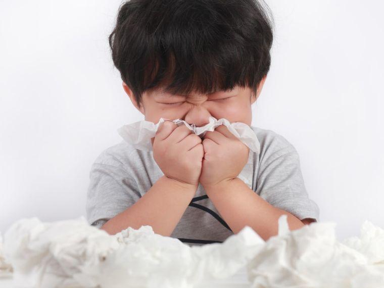seasonal allergic rhinitis and runny nose