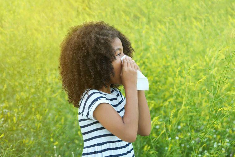 triat allergic rhinitis
