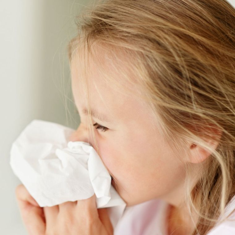 colds and allergies in children