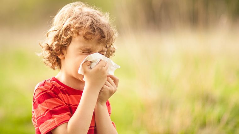 treatment allergic rhinitis advice
