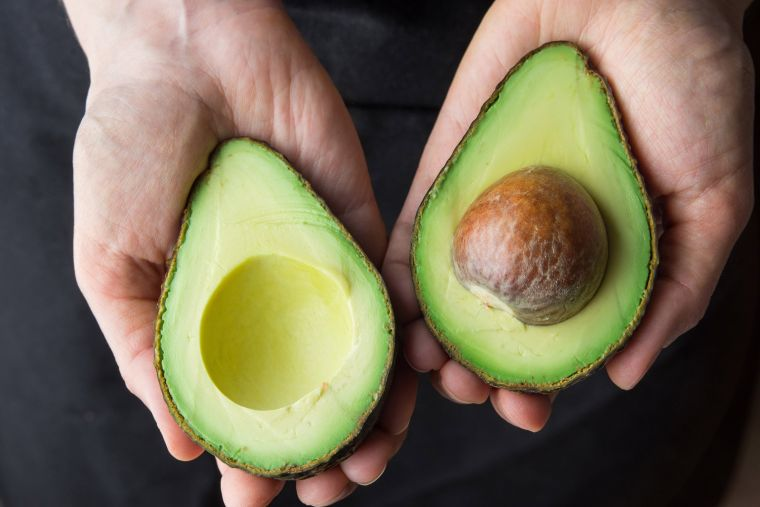 ideas for the virtues of avocado