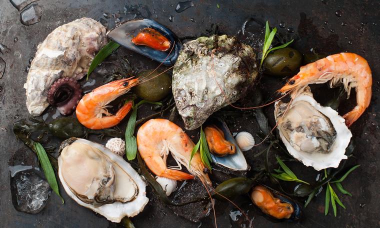 zinc seafood