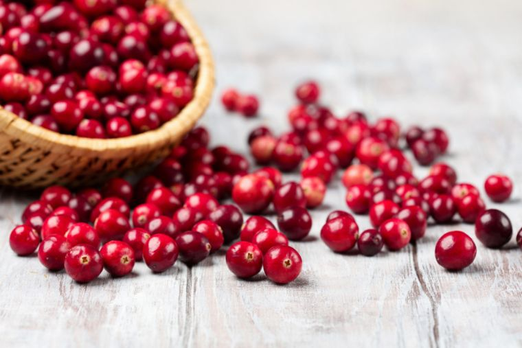 recipes with cranberries