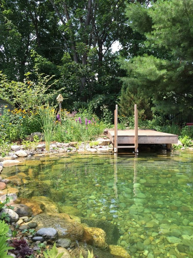how to build natural swimming pool