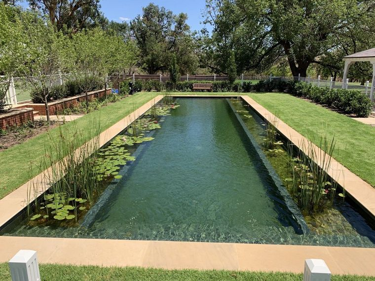 keep conventional pool with vegetation