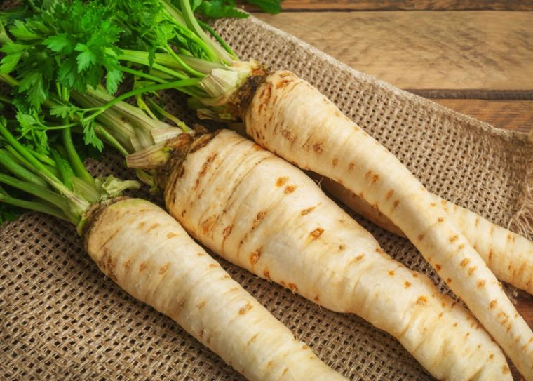 parsnip is a seasonal vegetable in autumn