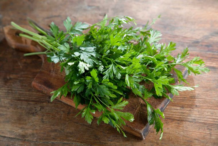 recipe with fresh herbs