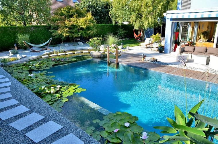 hybrid pool between traditional natural