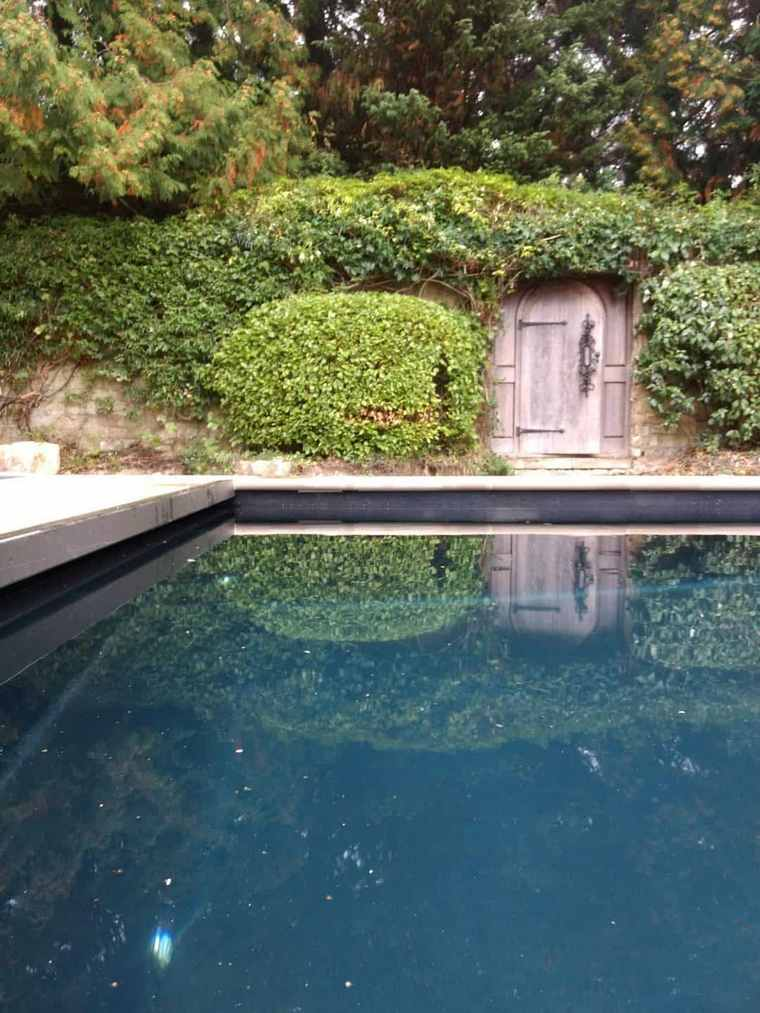 organic swimming pool how to maintain