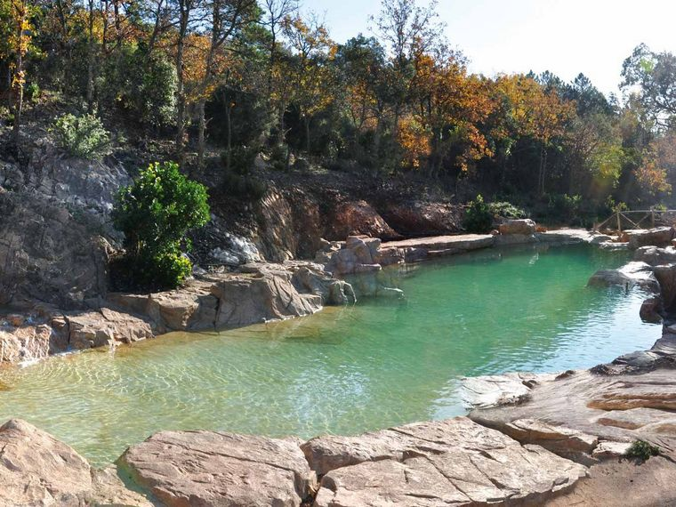 all about natural swimming pool