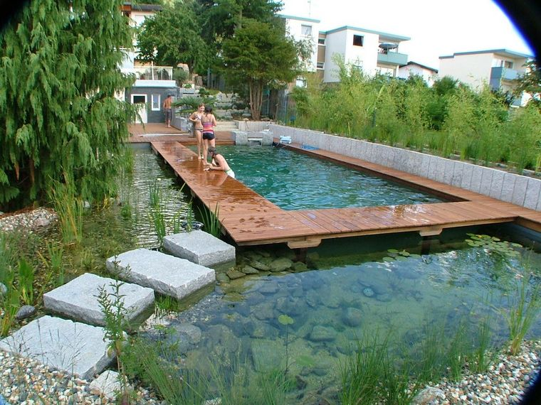 all about organic swimming pool