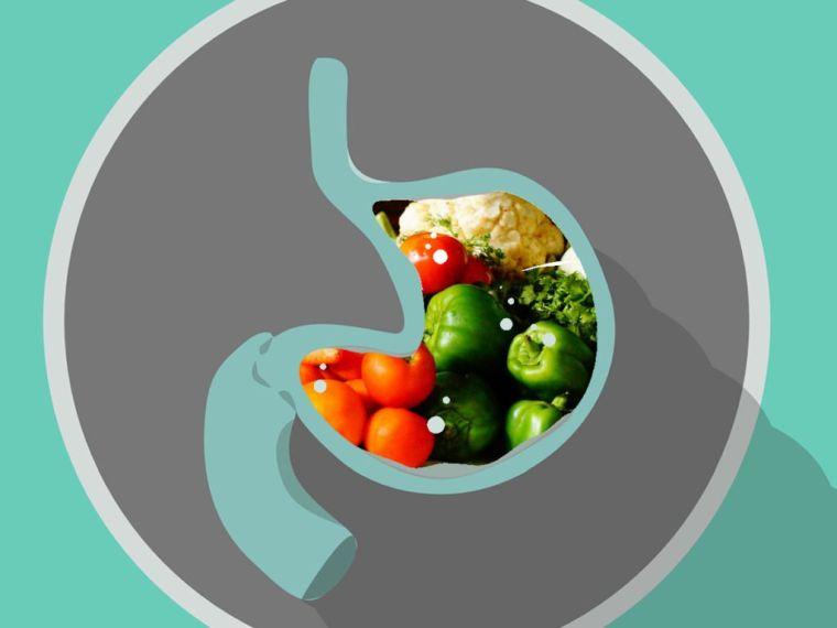aliments bons pour l'estomac