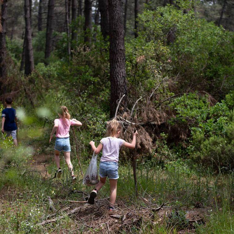 nature forêt besoin de l enfant